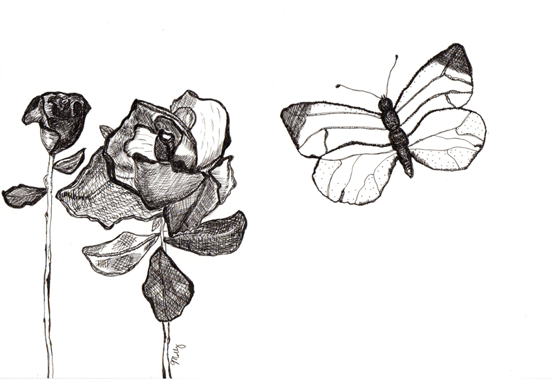 Roses and Butterflies